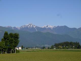 初夏の常念岳.jpg