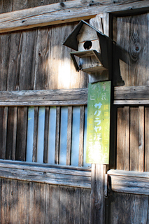 大平宿~鳥の巣箱.jpg
